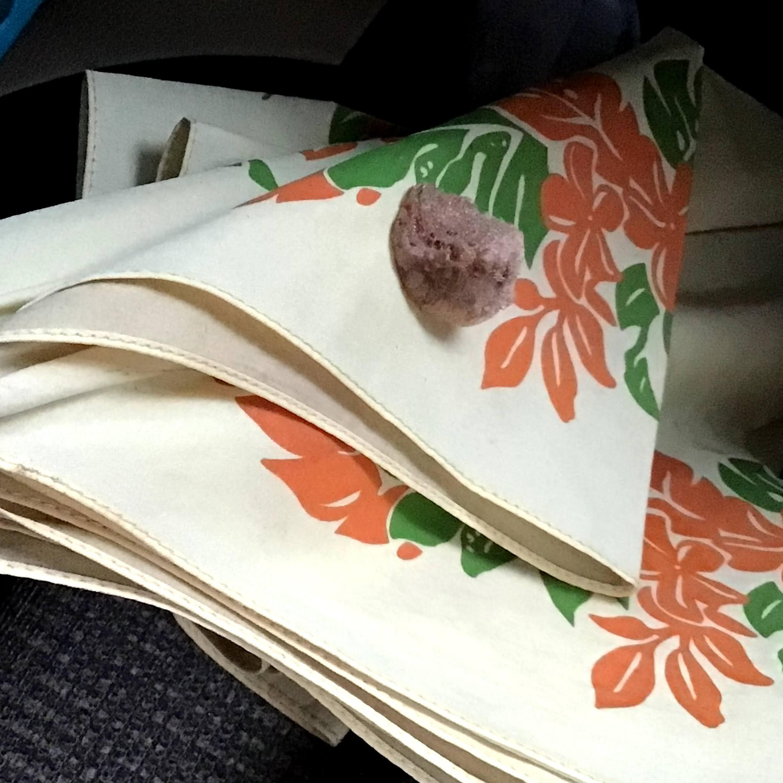 傘にカマキリ卵